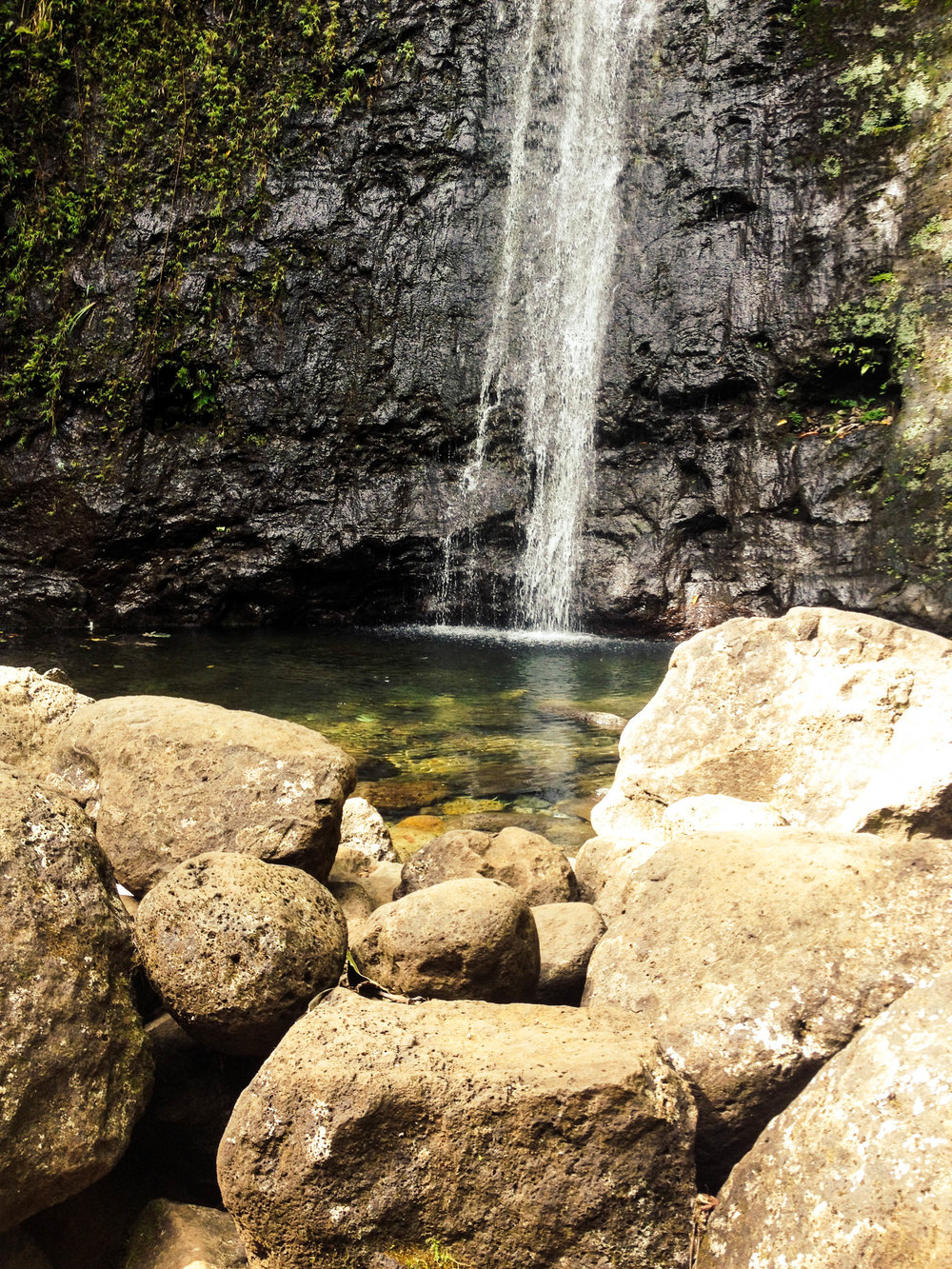 Manoa Falls Hike on Oahu + SaltWaterVibes
