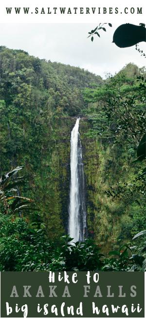 Akaka State Falls Big Island Hawaii + SaltWaterVibes