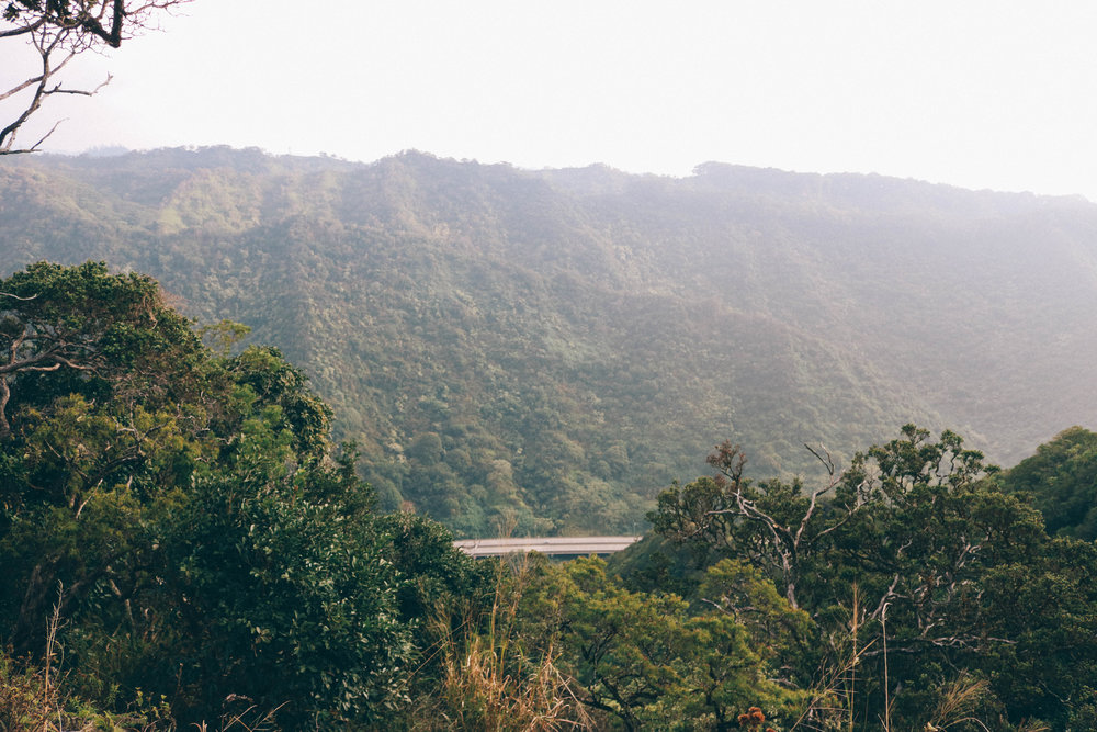 Aiea Loop Trail + SaltWaterVibes