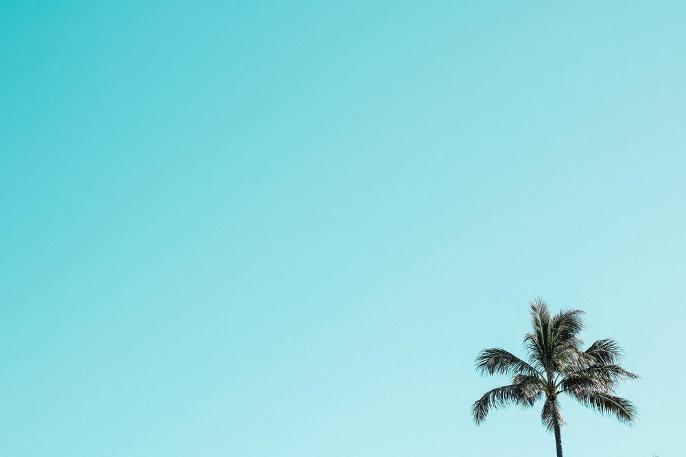 visit hawaii -