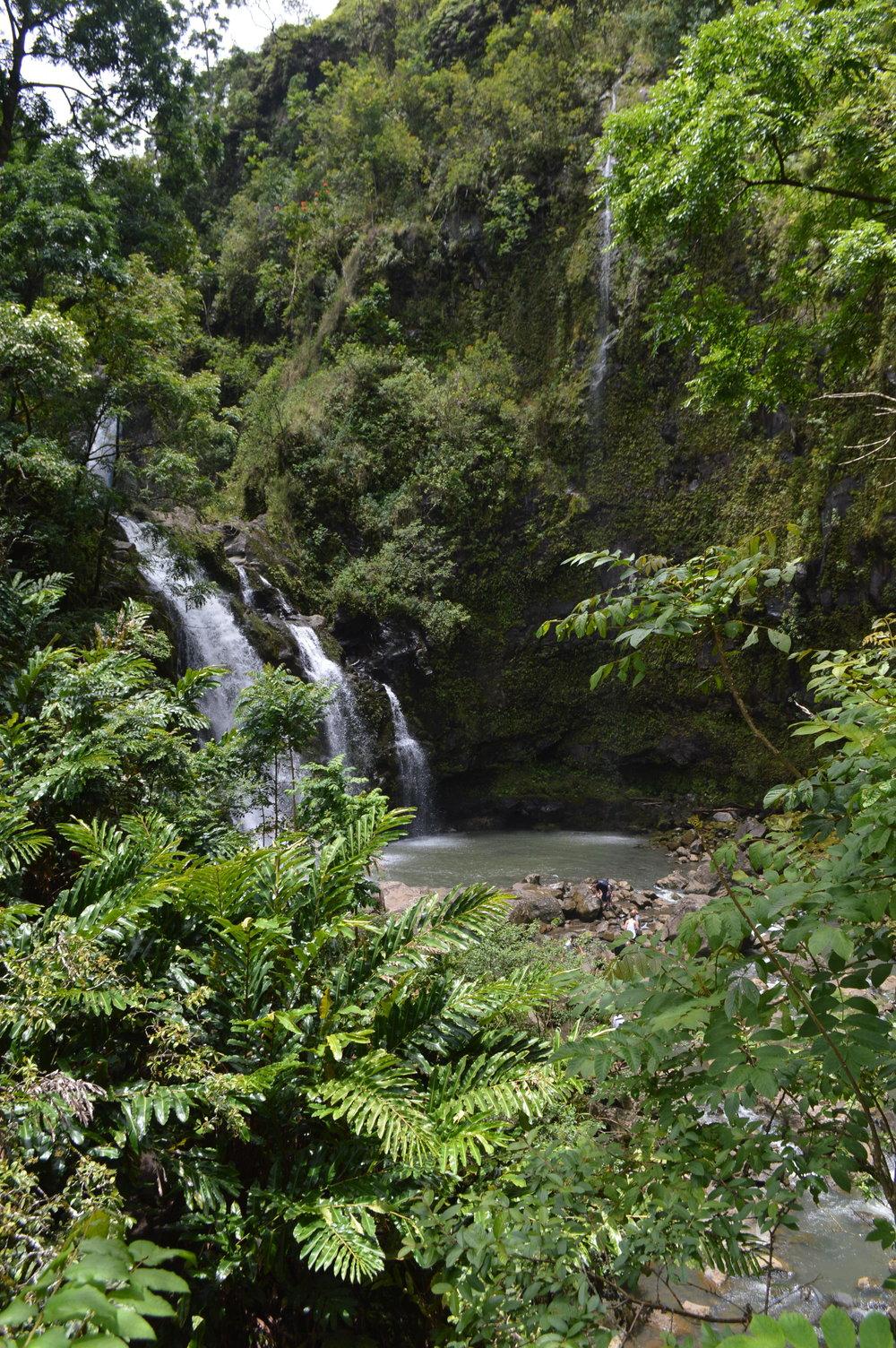 Maui - the garden isle