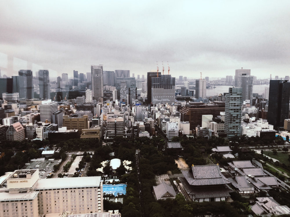 An Adventure Up Tokyo Tower | SaltWasterVibes