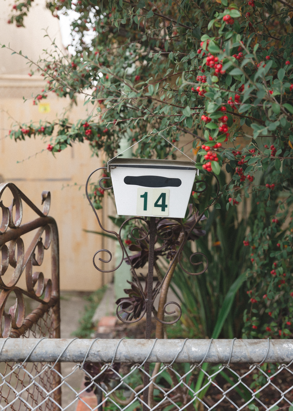 letterbox front yard australian victoria