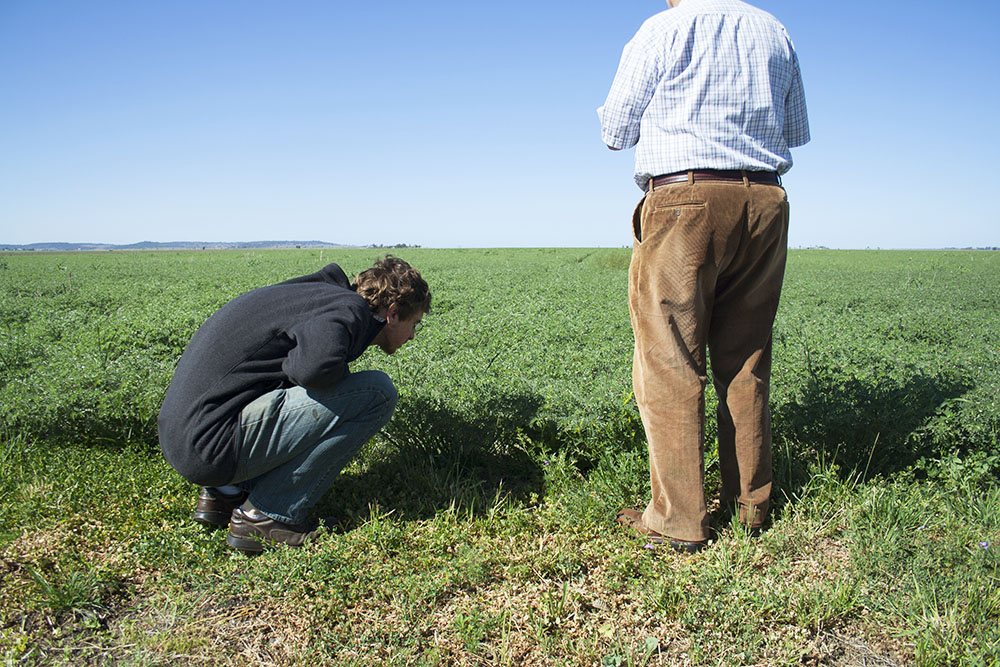 John & Ross inspecting soil on the side of the highway in Darling Downs, near Toowoomba, Queensland.