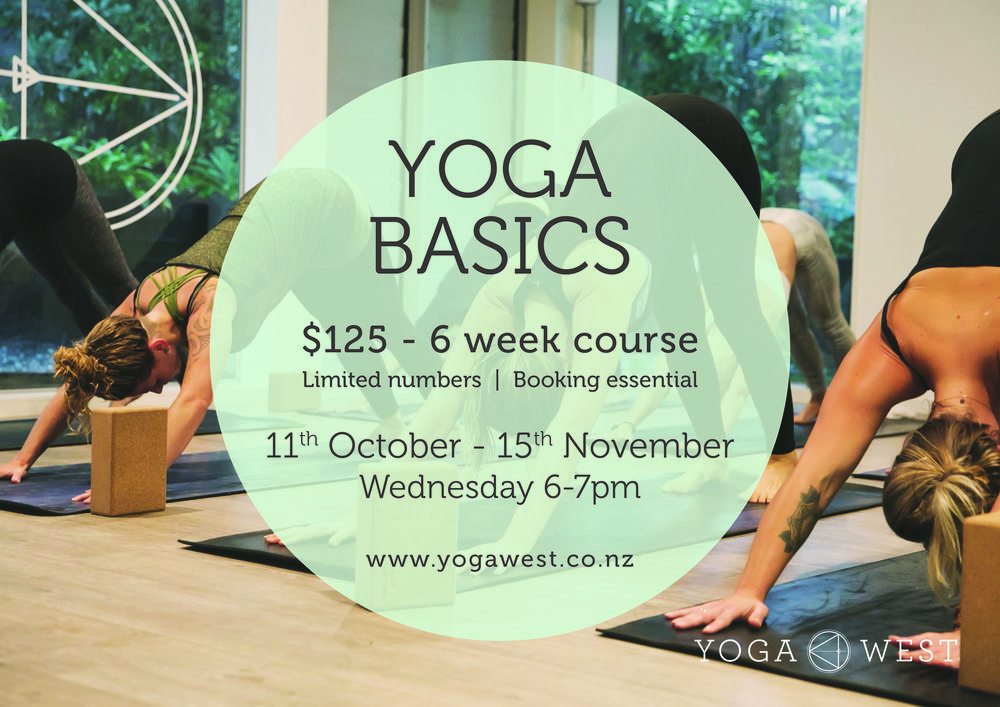 2017 Yoga Basics_11Oct-15Nov.jpg