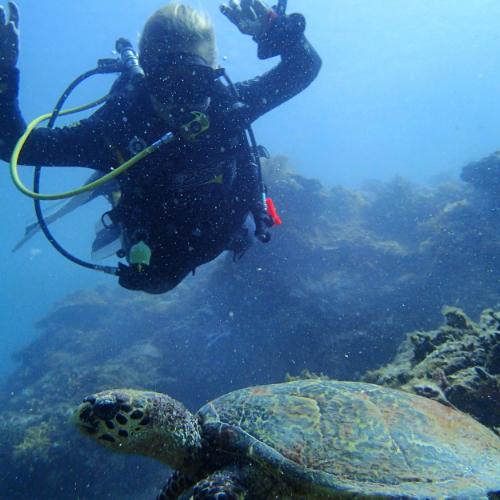 sea-turtle-girl-diver-divemaster