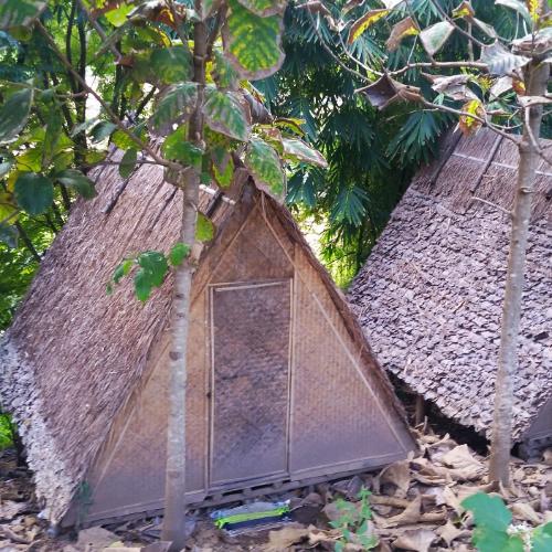 hut-bungalow-pai-circus-hostel