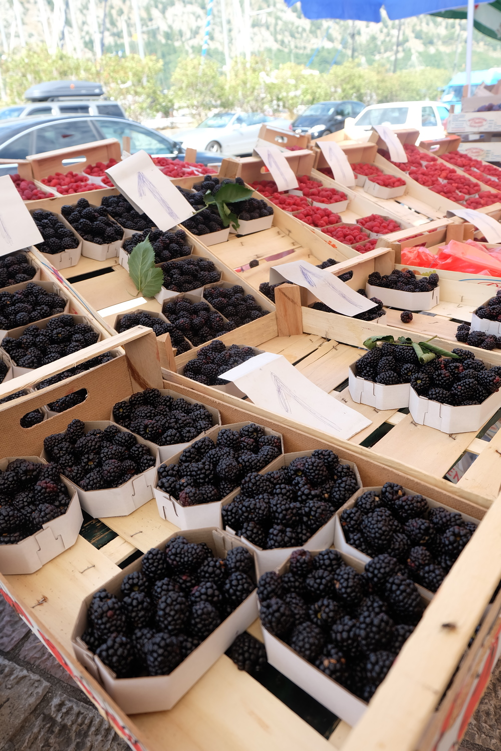 kotor-market-cruise-fruit-beauty.JPG