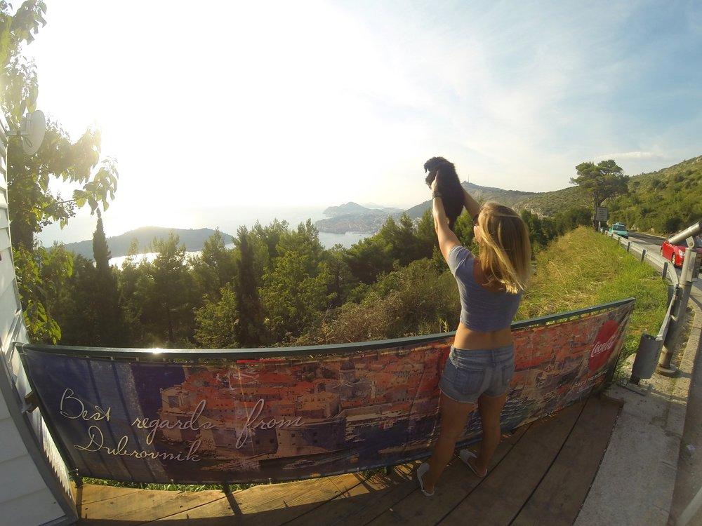 puppy-croatia-rescue-digital-nomad