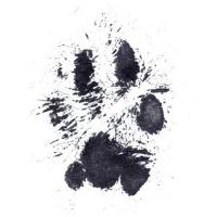 paw+print+2.jpg
