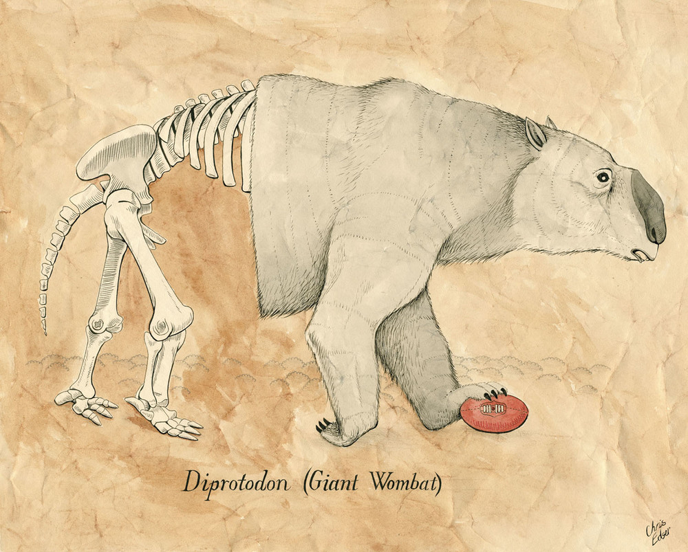 diprotodon-megafauna.jpg