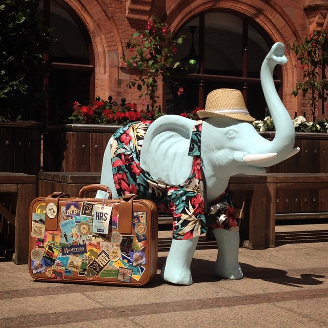 He's finished and ready to go on his holidays #elephantman