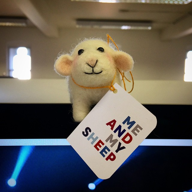 Baa-rilliant giveaways from @johnsmedleyknitwear - thanks @myheartgoespop #JohnSmedley #sheep #knitwear (at One Big Company)