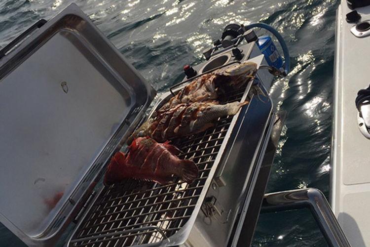 Try our delicious on-board BBQ!