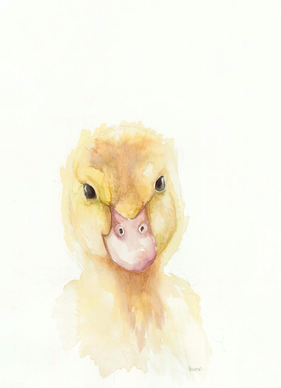 Baby Duck.jpeg
