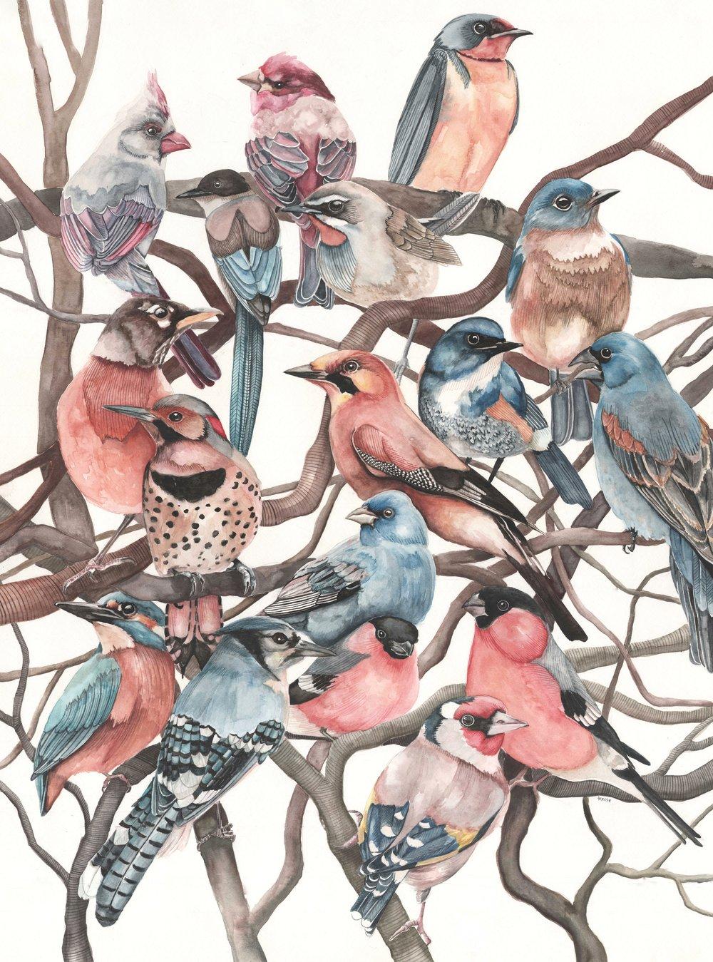 birdsonbranches.jpeg