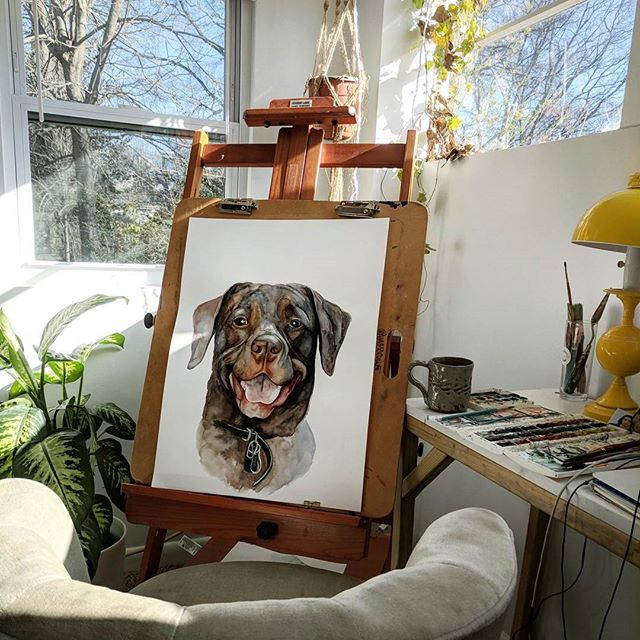 """I haven't been posting much lately because I've been so busy with freelance work and commission paintings! So here's an in progress shot of my largest pet portrait so far! (18x24""""). Can't wait to start adding all the details!"""