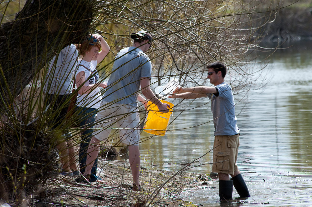 Gonzaga students studying biology, chemistry, environmental science and other disciplines collaborate on water research on the banks of Lake Arthur in Spokane, WA (photo by Gonzaga University)