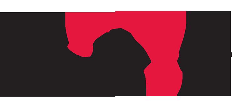Skillsoft.png