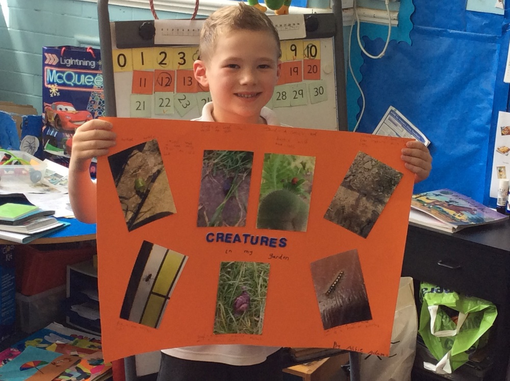 Great zooming in of creatures found in the garden