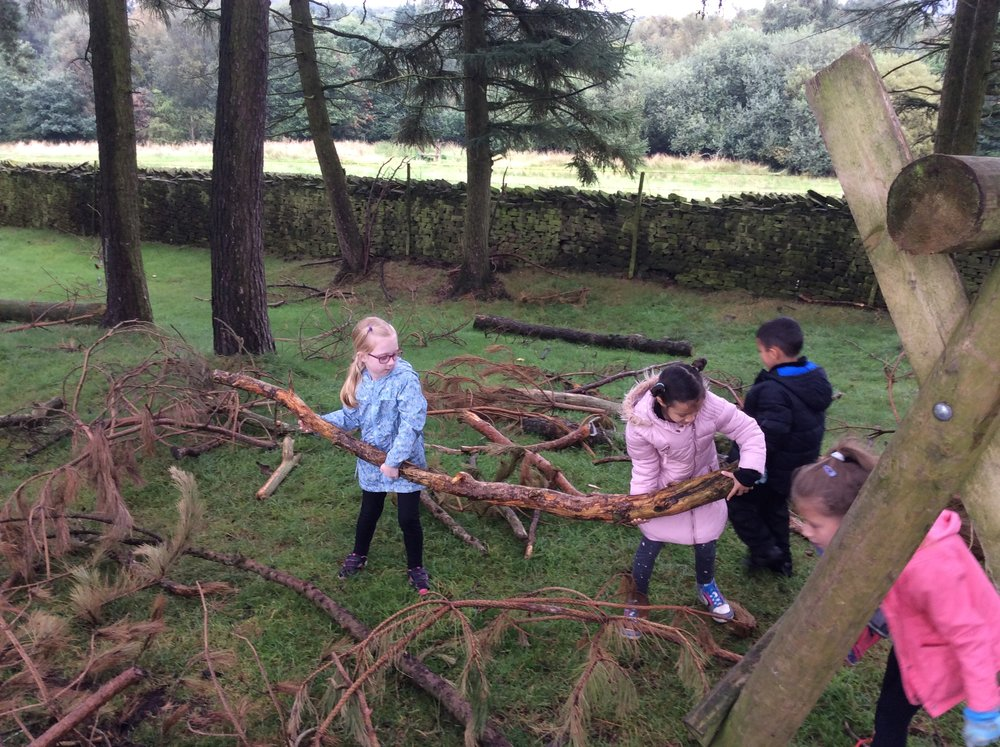 Collecting logs for the den