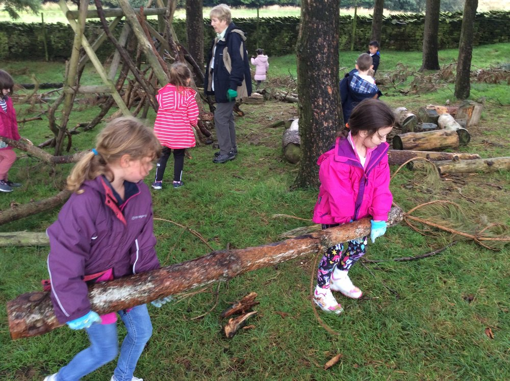 Great team work to carry the heavy logs