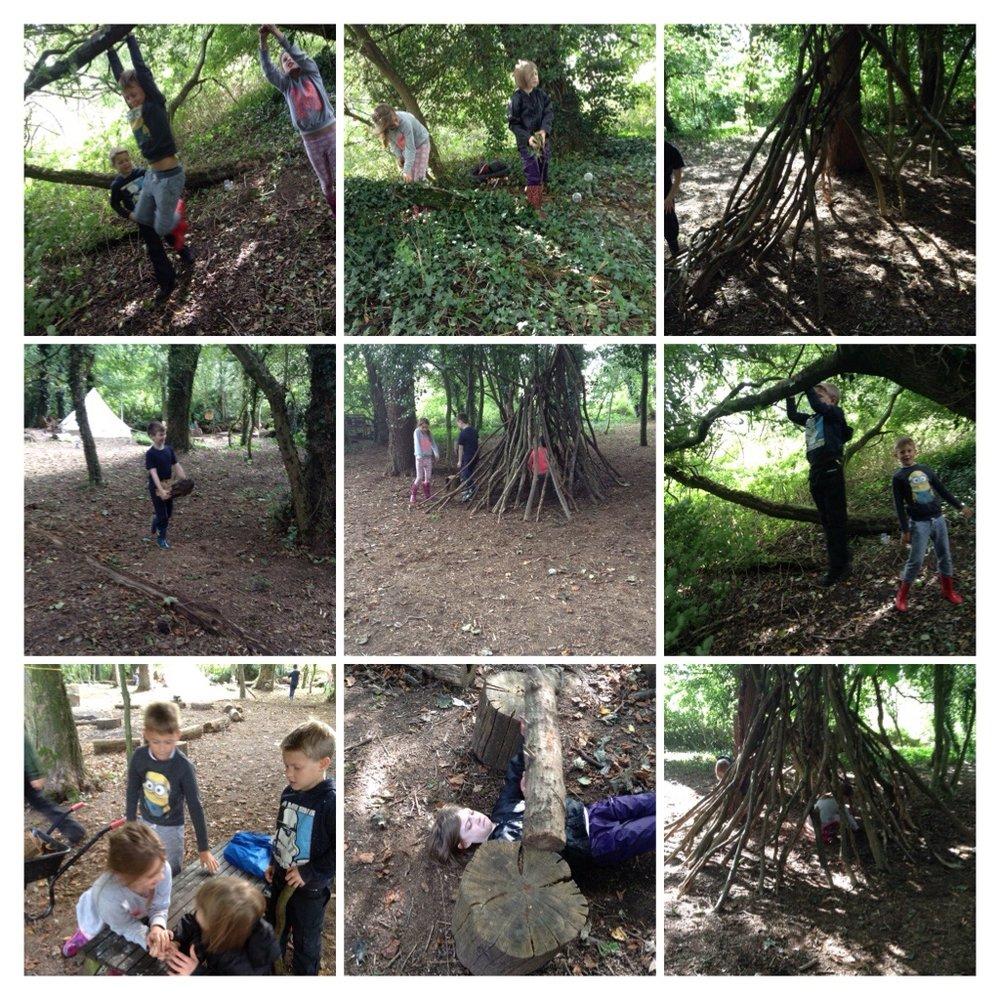 We made a den and a gym using logs and sticks.