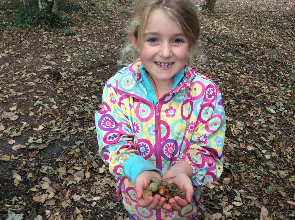 ...and collecting goodies from the forest floor.