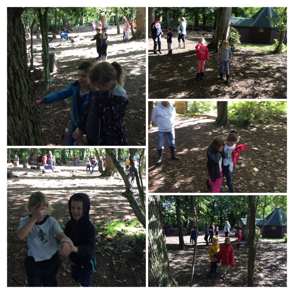 Leading our blindfolded friends to a tree to hug. Could they find the same tree once they had gone back to the middle of the wood?
