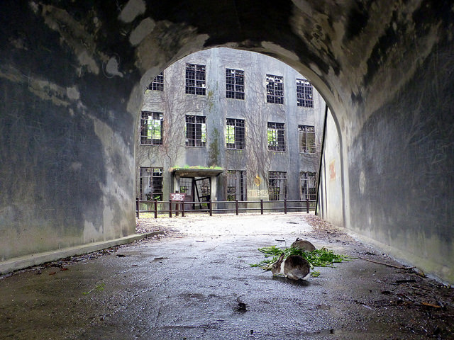 Okunoshima's abandoned factory photo by: Flickr@Helen ST