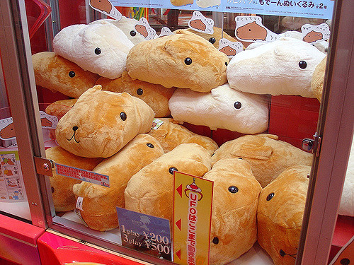 Lots of  Capybara-san  dolls in a glass container at the Sega arcade in Shibuya, Tokyo. Photo by: Flickr@Chuck