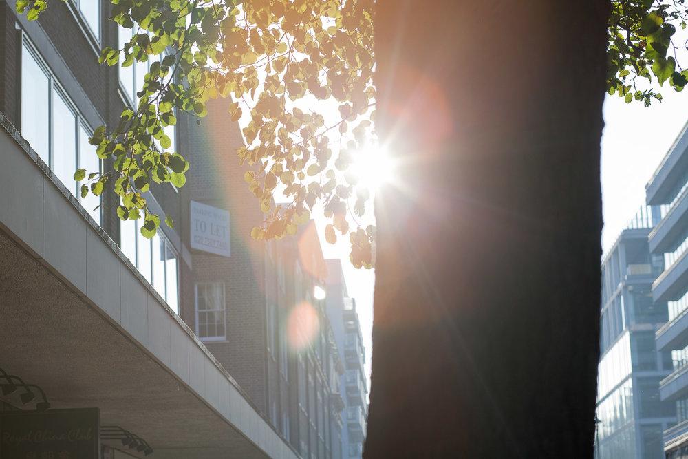 Photowalk2012-4.jpg
