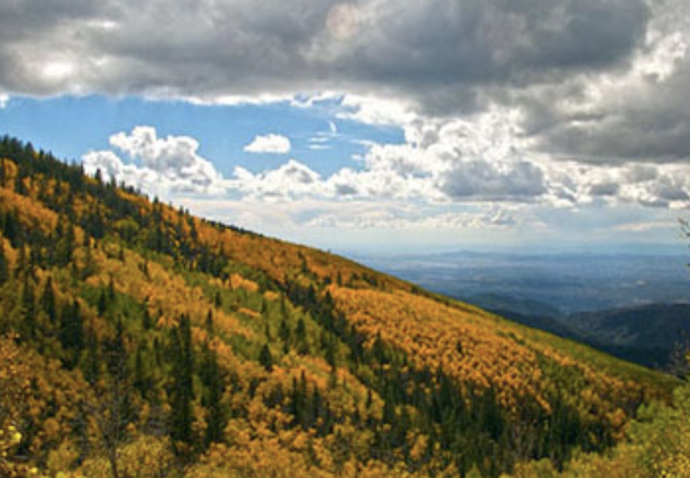 Santa Fe National Forest - Among the many assets of the U.S. Forest Service.