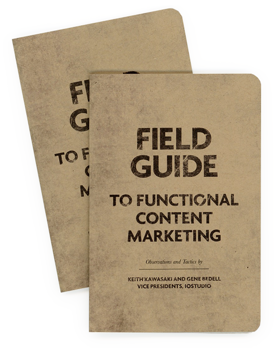 Guide for content marketers wins gold. - 2019 American Advertising Federation regional competition.