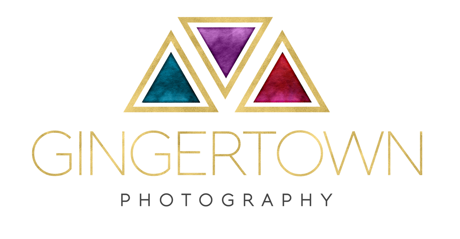 GINGERTOWN PHOTOGRAPHY - SOUTHWEST MICHIGAN PHOTOGRAPHER