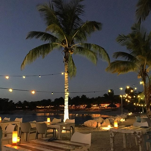 Beach Grill #beach #islandlife #sunset #palms #caribbean #curacao #travelphotography #travelpics #wanderlust #eatingout #alafresca #abcislands #explore #wonder #seeingtheworld #lovetotravel