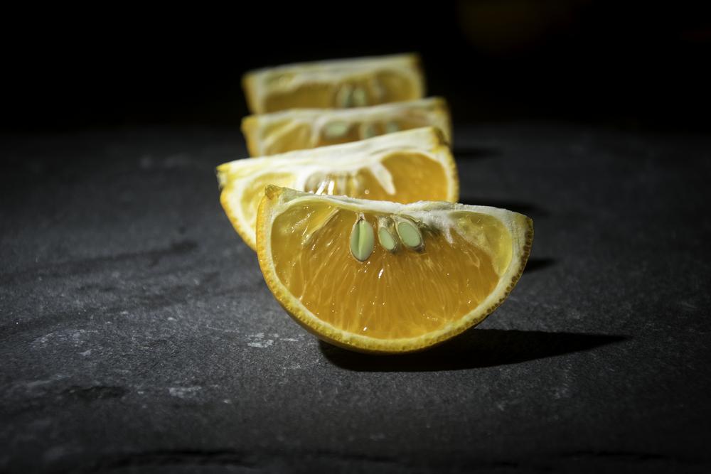 Fruit still life 3.jpg