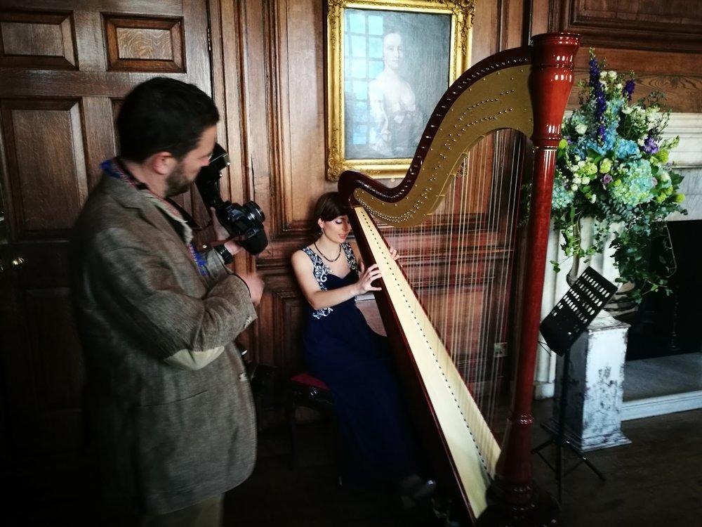 Wedding Harpist.jpg