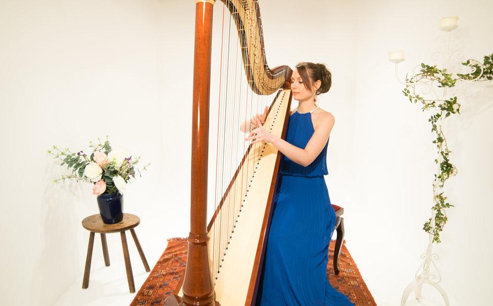 Harpist for hire.jpg