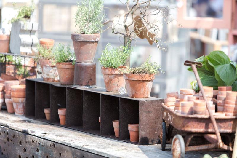 Flower pot display at the City Farmhouse Pop Up Fair