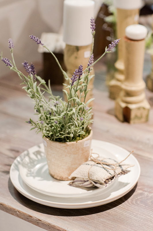A pot of lavender siting on antique plates