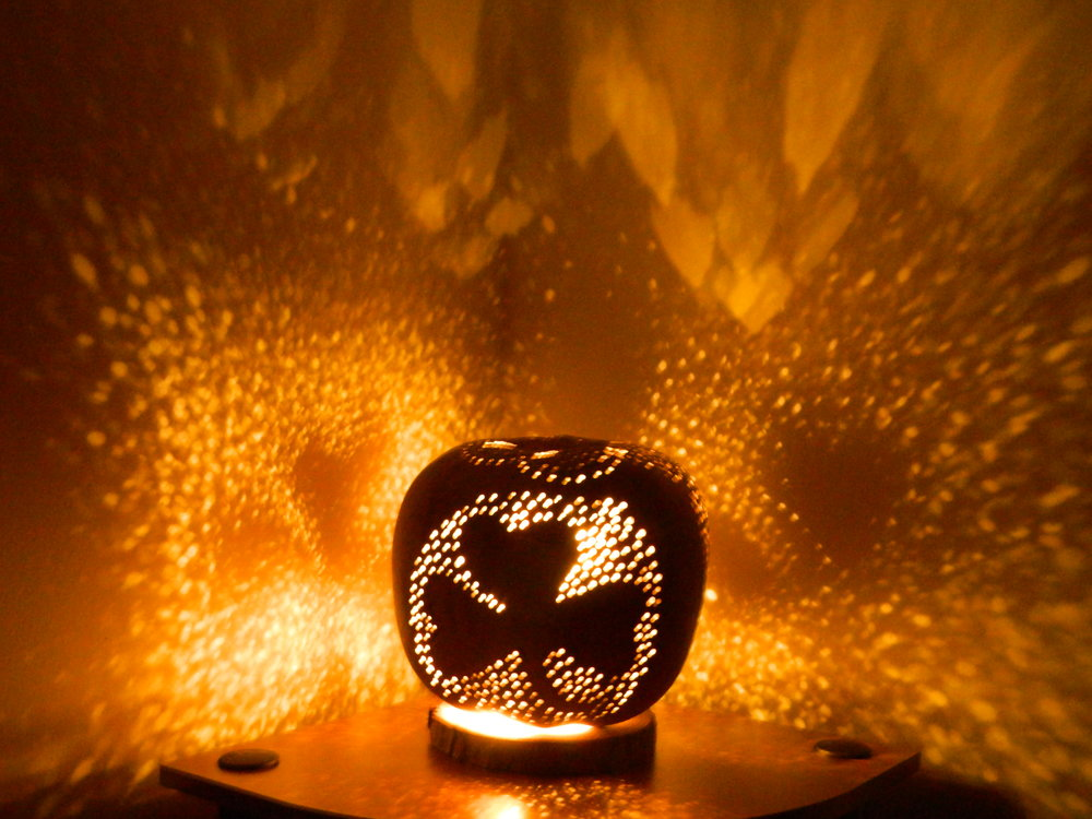 Gourd Lamps - Our lamps give a romantic ambience to  an intimate dinner for two. They also make a beautiful night light in any space you place them. They are beautiful lamps at night and gorgeous accent pieces by day.Our lamps are lit by either battery powered LEDs or plug in LED lamps.Shop Here