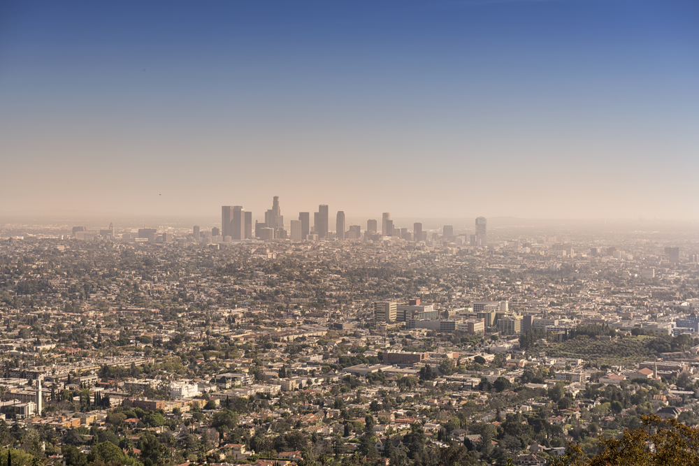 LA Landscape.jpg