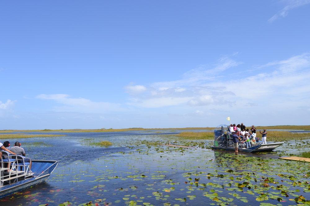 GMS Everglades Tour.JPG