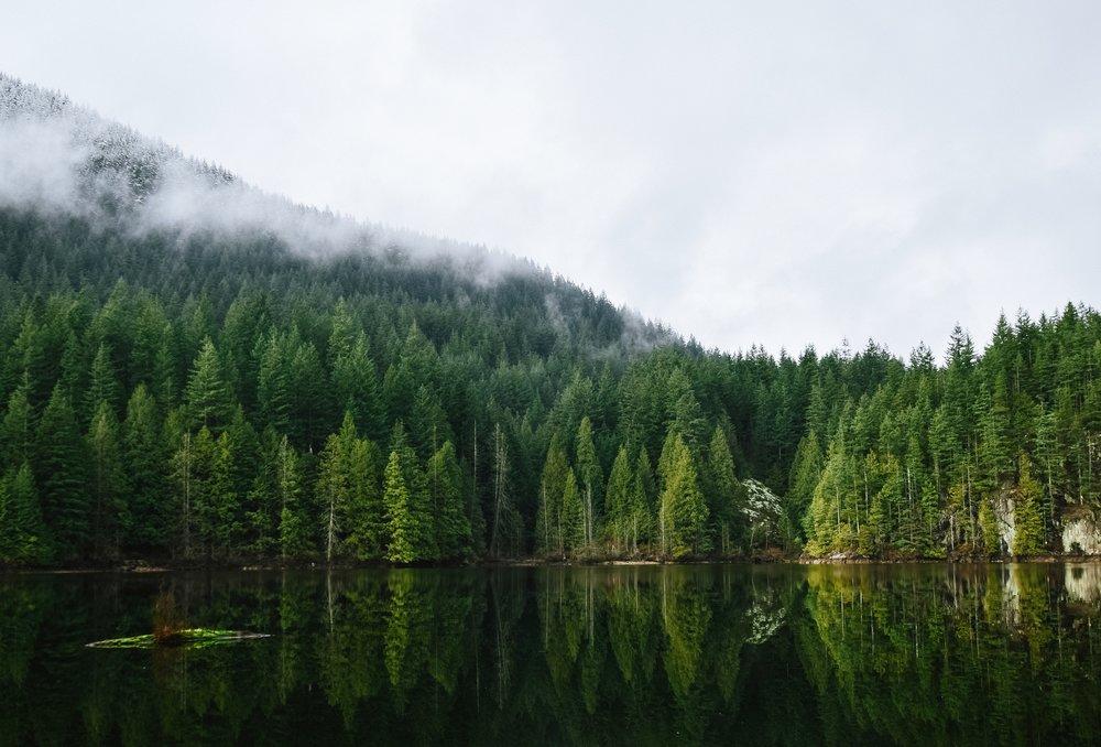Vancouver Island_DMC.jpg