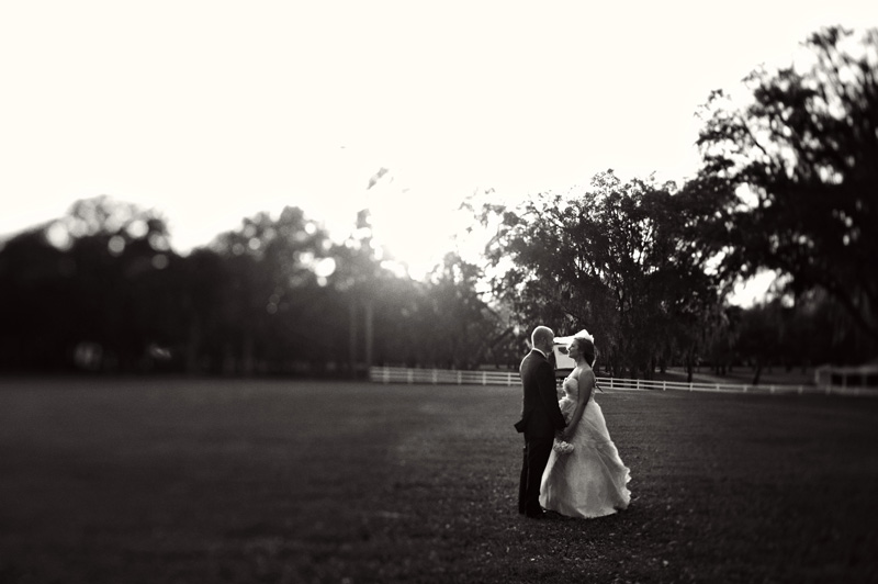 Lange Farm: lawn bride and groom