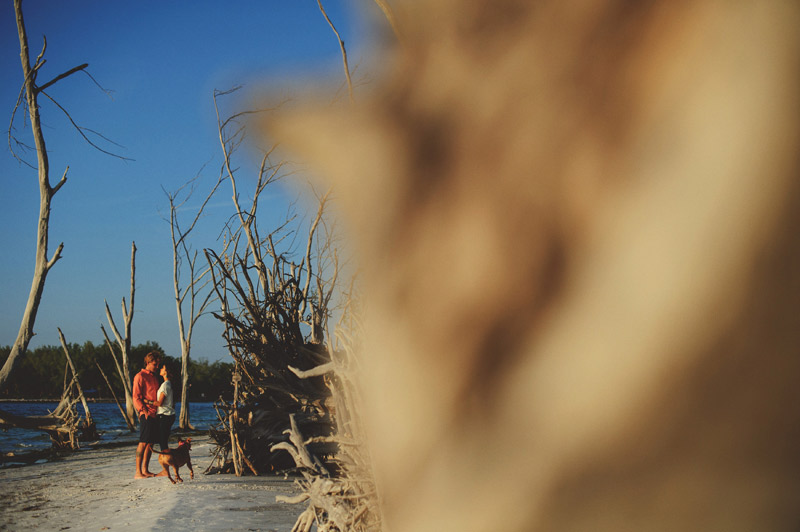 romantic-driftwood-beach-engagement-session-083
