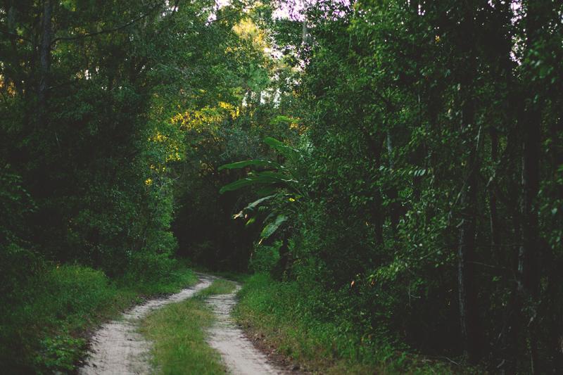 romantic-woodsy-farm-engagement-jason-mize-021