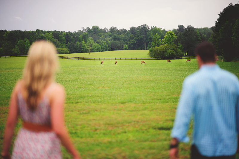 barnsley garden resort wedding: berry college deer