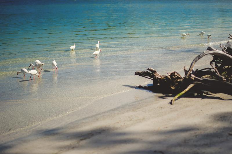 boho-beach-engagement-photos-0012